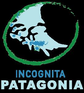 logo-incognita_vertical-transparente
